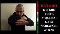 KYUSHO 3° naihanchi 2