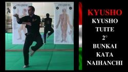 KYUSHO (8)